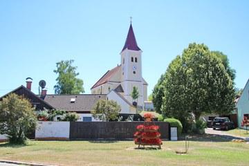Erdäpfel_Prinzendorf