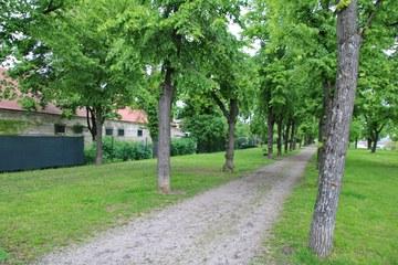Retz_Stadtpark