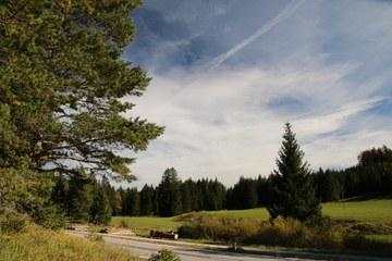 Straße übers Gscheid (© Elisabeth Vavra)