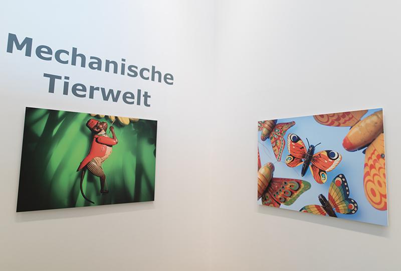 © NÖ Museum Betriebs GmbH, Foto: Daniel Hinterramskogler