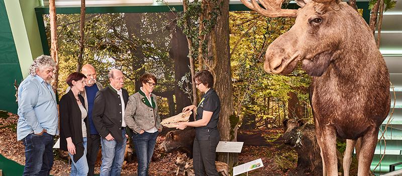 © NÖ Museum Betriebs GmbH, Foto: Klaus Engelmayr
