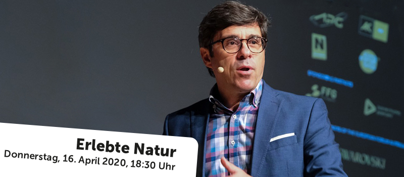 © NÖ Museum Betriebs GmbH, Foto: Hans Leitner